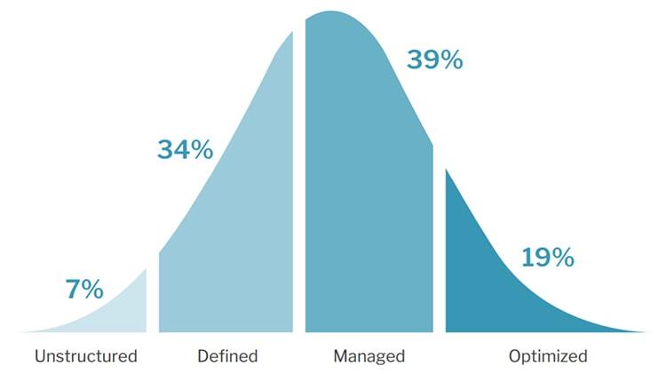 digital-commerce-maturity-chart2